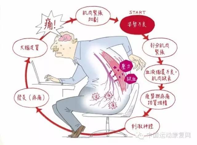 长期伏案工作容易导致腰痛   二、腰痛常见原因   1、脊椎性腰背痛:   姿势不良性腰痛,如坐姿不良、长时间伏案工作等;   退行性腰背痛如增生性脊椎炎,椎间盘突出症,椎管狭窄,腰椎后关节紊乱症等;   炎症性腰背痛如强直性脊椎炎,结核性脊椎炎,化脓性脊椎炎,病灶性骶髂关节炎等;先天畸形性腰背痛如半椎体,腰椎骶化,骶椎腰化,脊椎裂等;   营养代谢障碍性腰背痛如骨质软化症,氟骨症等;   外伤性腰背痛如椎体骨折,肌肉扭伤,椎体滑脱等;   萎缩性腰背痛;   内分泌异常性腰背痛如骨质疏松