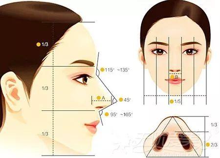 如果脸部脂肪多适合隆鼻吗