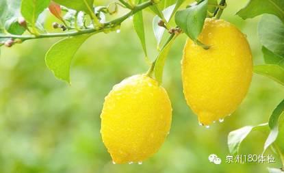 柠檬都有哪些功效?