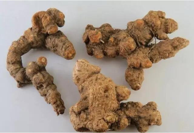 药材专用有机肥的施用方法-苍术有机肥